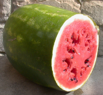 Watermelon Surprise
